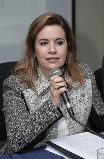 Sandra Goulart é vice-presidente da comitê científico da Conferência