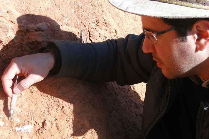 Jonathas Bittencourt, professor do IGC, conta como a suspensão dos trabalhos de campo afetou a Paleontologia