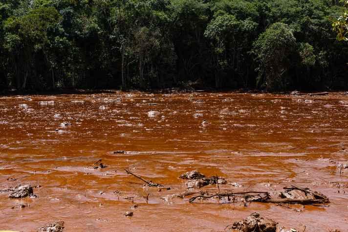Área de manancial atingida pelos rejeitos da barragem de Brumadinho, em janeiro de 2019