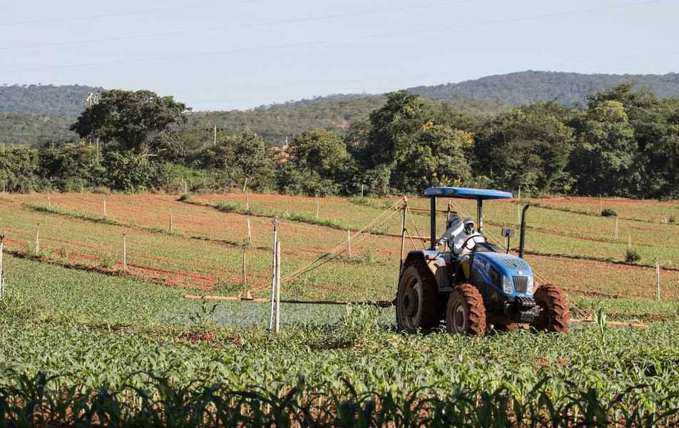 Trator pulverizando plantação de milho no campus Montes Claros