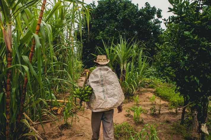 Comunidades tradicionais ocupam e fazem uso de terras griladas no norte de Minas