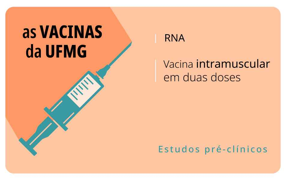 <p>Imunizante em estudo no ICB mimetiza a proteína S do vírus Sars-Cov-2, incentivando a resposta imune do organismo</p>
