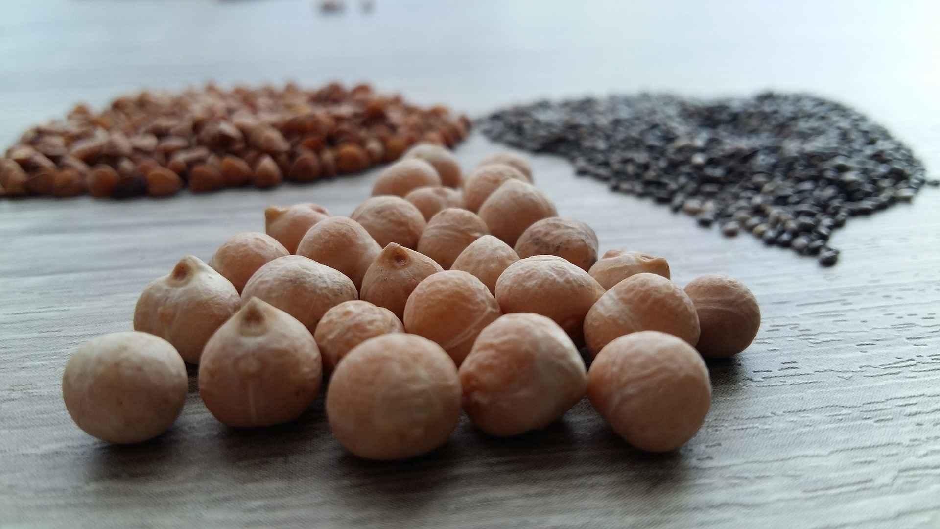 O grão é da família do feijão e da lentilha