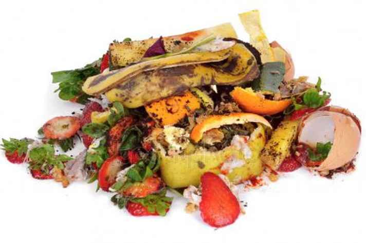 Produção de biocarvão é alternativa de reaproveitamento para resíduos vegetais, como cascas e talos