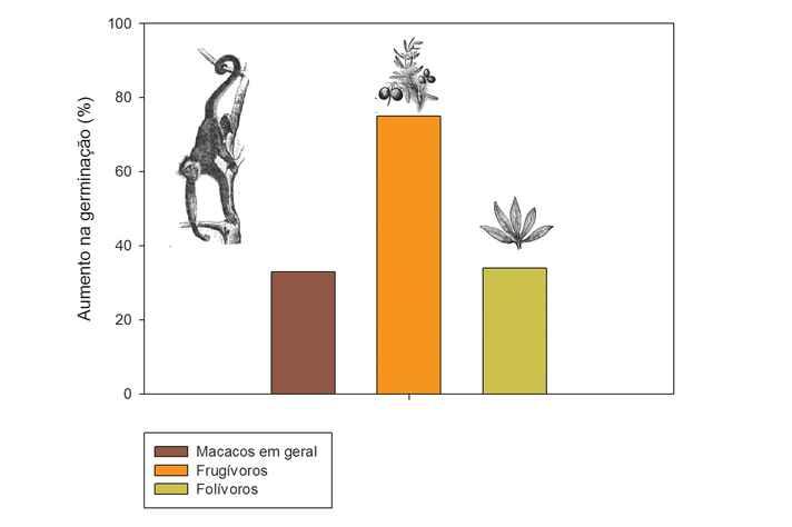 Gráfico revela que os macacos frugívoros são os principais responsáveis pela germinação de sementes em áreas florestais