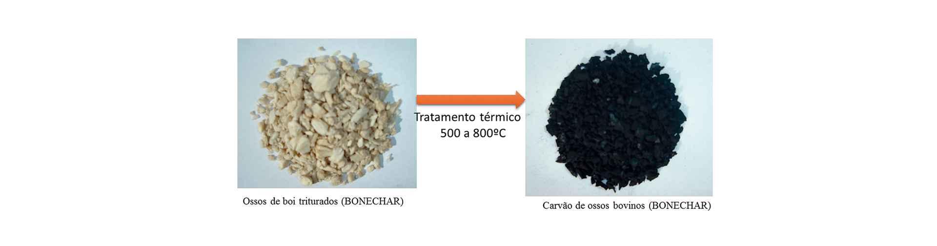 Tratamento térmico em altas temperaturas transforma os ossos de boi em carvão