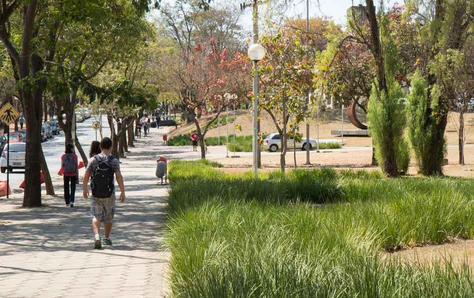 Jardim próximo à Escola de Engenharia da UFMG
