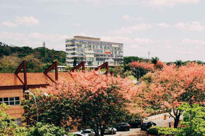 No campus Pampulha, haverá postos de votação em 22 unidades
