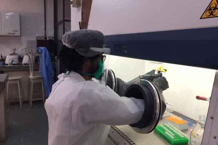 Análise de amostras exige cabine de biossegurança