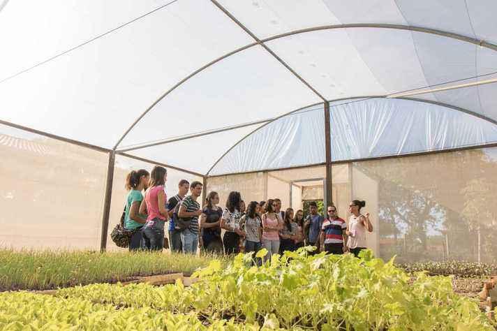Estudantes de graduação em viveiro de mudas do ICA