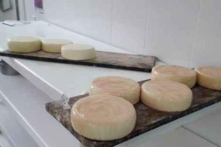 Embalagem sustentável busca substituir o plástico, e auxilia na preservação do queijo.