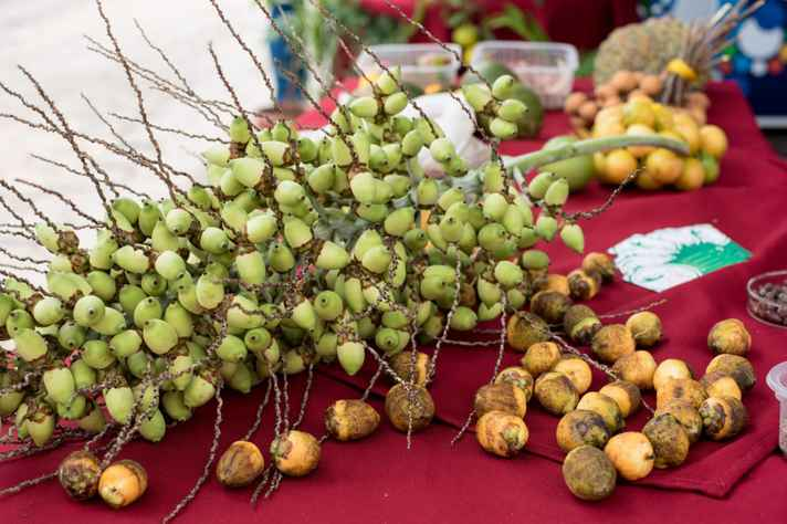 Frutos do coquinho azedo são consumidos 'in natura' e em formas industrializadas
