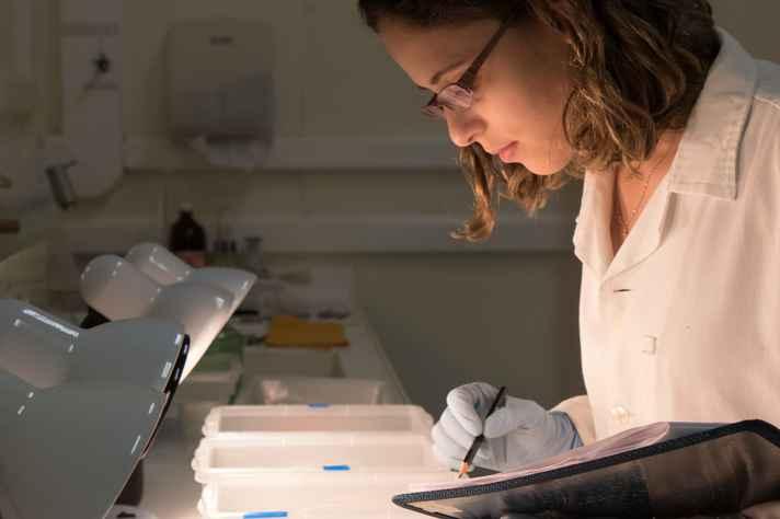 Aluna no Laboratório de Estudos sobre o Limnoperna Fortunei (LELF).