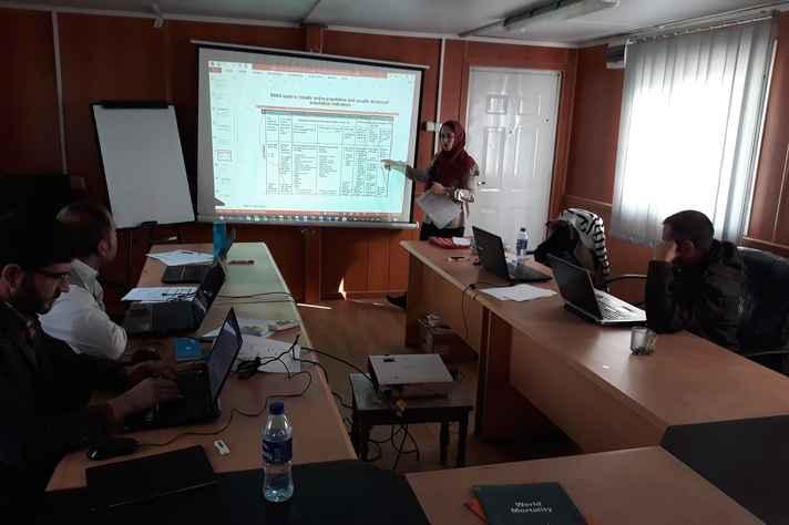 Vanessa Ferreira, pesquisadora do Cedeplar, apresenta dados aos técnicos afegãos
