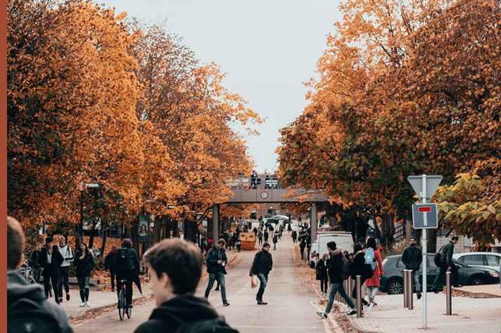 Outono nA Universidade de Warwick, Reino Unido