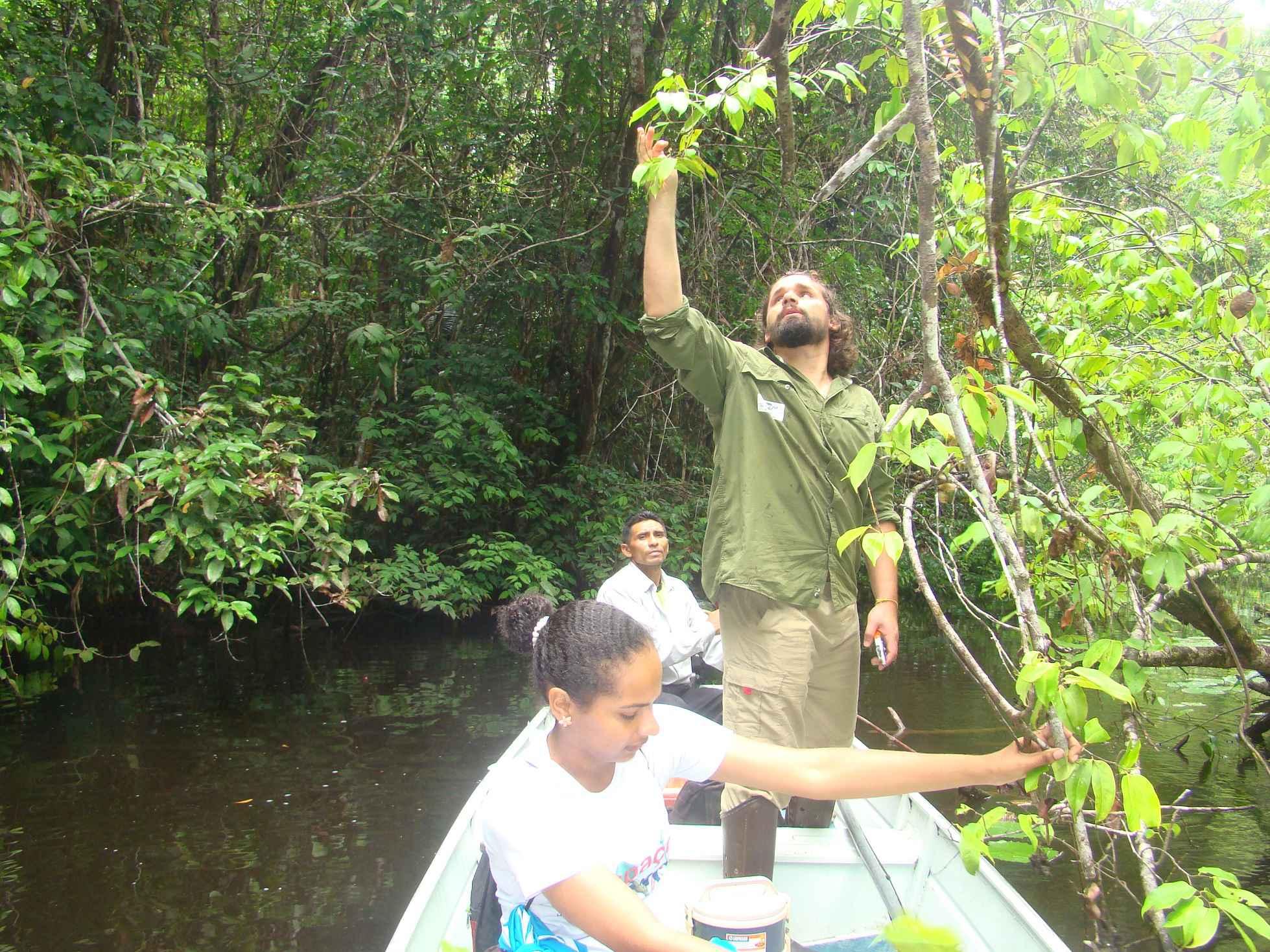 Danilo Neves coleta material na Floresta Nacional de Caxiuanã, no Pará