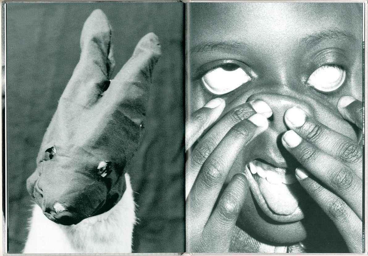 Página do livro Rions Noir, de Annette Messager, que fará parte da mostra