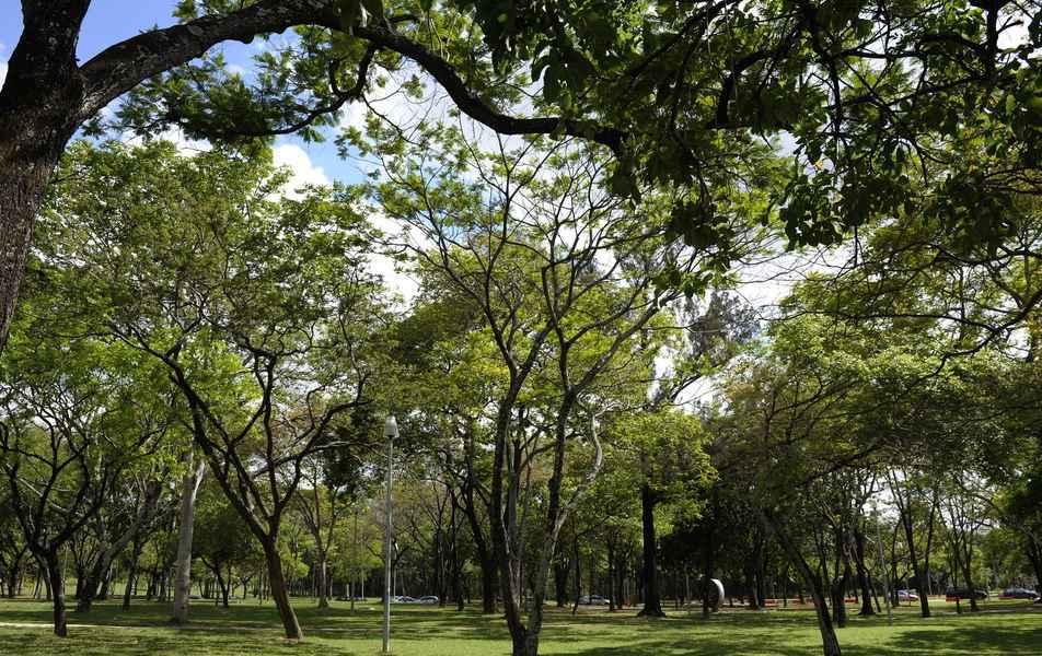 Bosque da Escola de Música, no campus Pampulha: redução do fluxo de pessoas é medida de prevenção