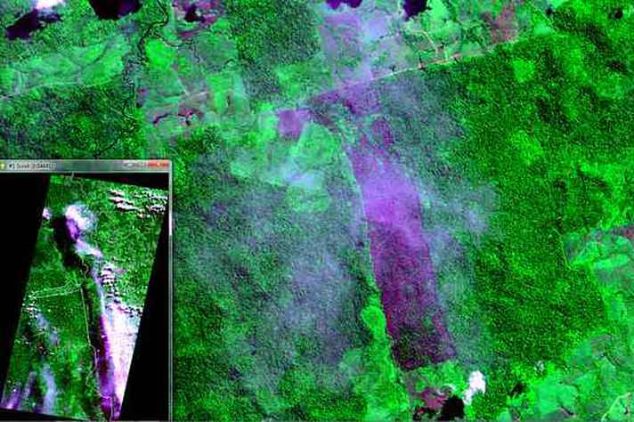 Desmatamento de 8 km², identificado em maio de 2018, na Floresta Nacional do Jamanxim, na Amazônia