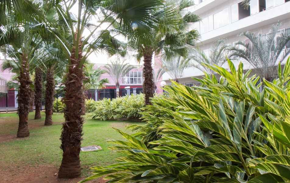 Jardim interno da Faculdade de Ciências Econômicas da UFMG