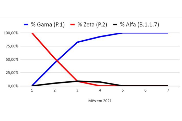 Frequência das variantes do novo coronavírus em Belo Horizonte – jan. a jul. 2021