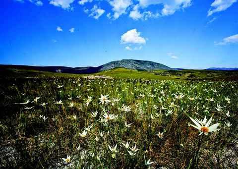 Serra do Espinhaço, uma das áreas protegidas em Minas Gerais