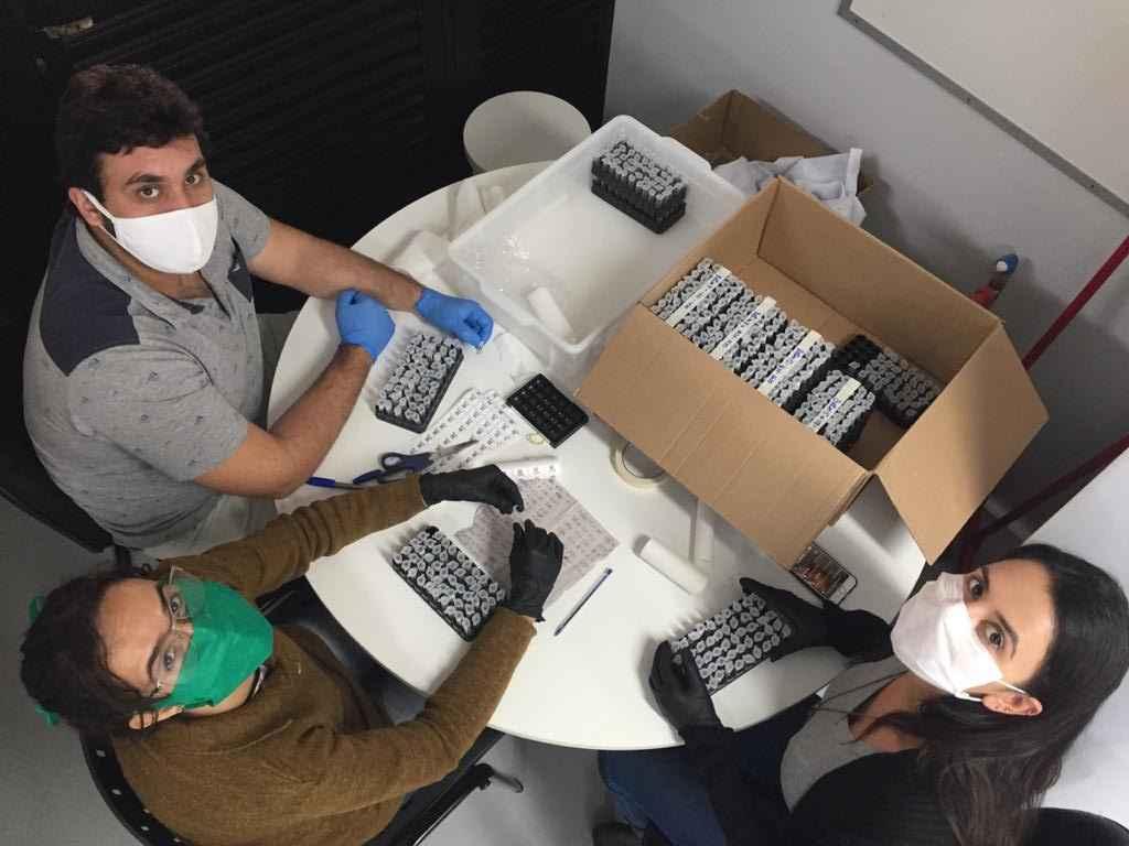 Cientistas organizam as centenas de amostras com que trabalharam na pesquisa