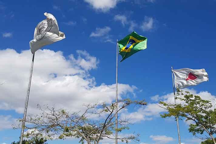 Bandeiras da UFMG, Brasil e Minas Gerais