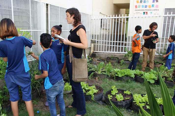 Horta escolar: projeto visa expandir espaços comunitários