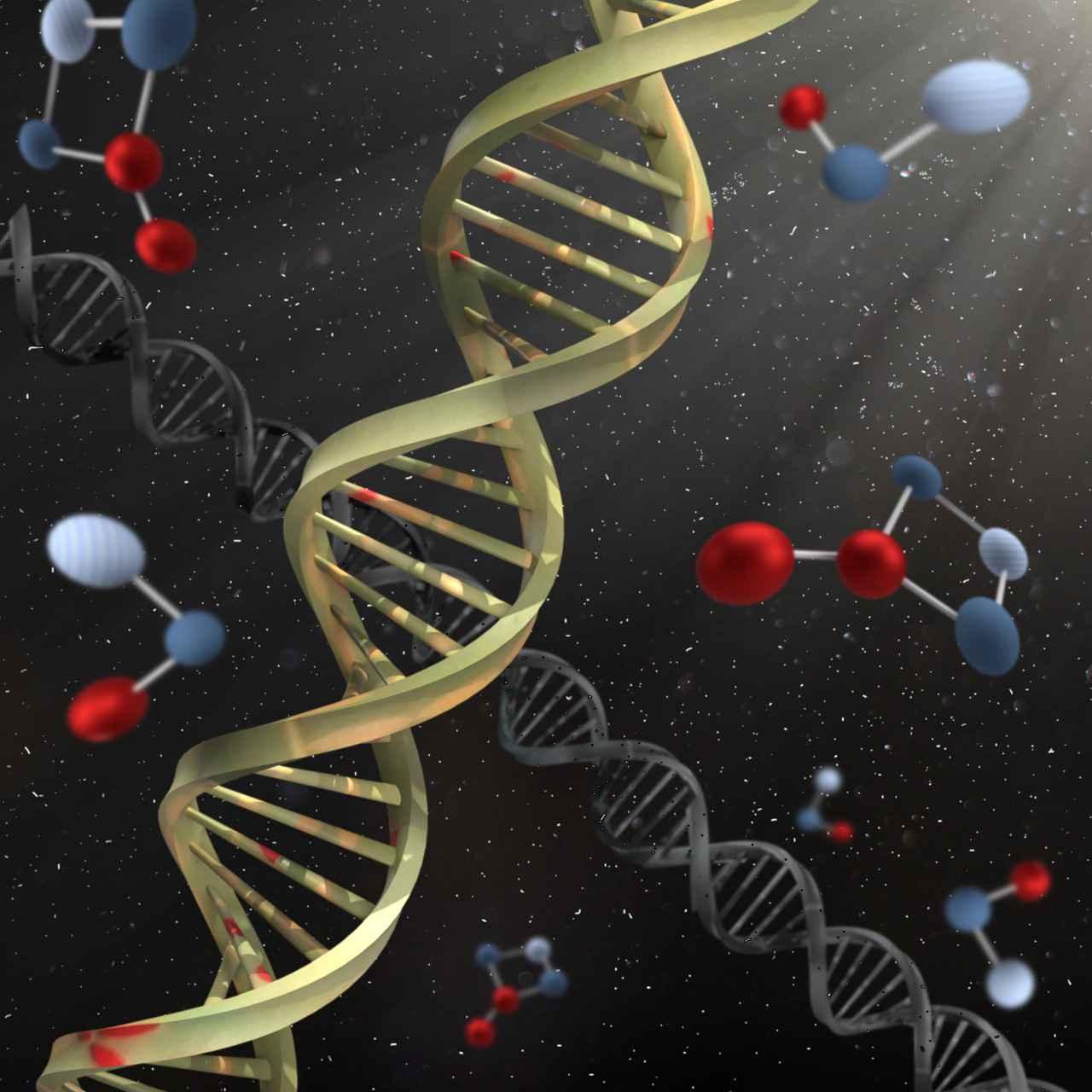 Representação artística do DNA