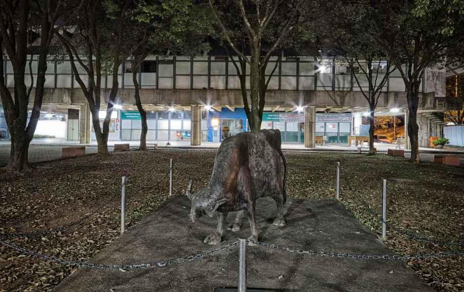 Escultura de Jarbas Juarez em frente ao prédio da Escola de Veterinária.