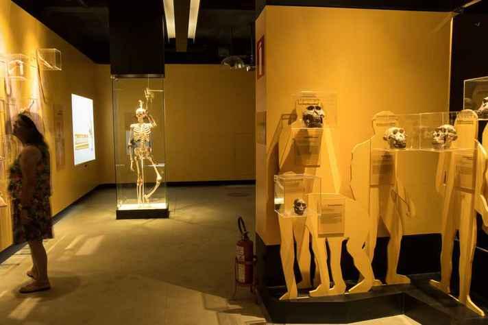 Exposição no Museu de História Natural da UFMG
