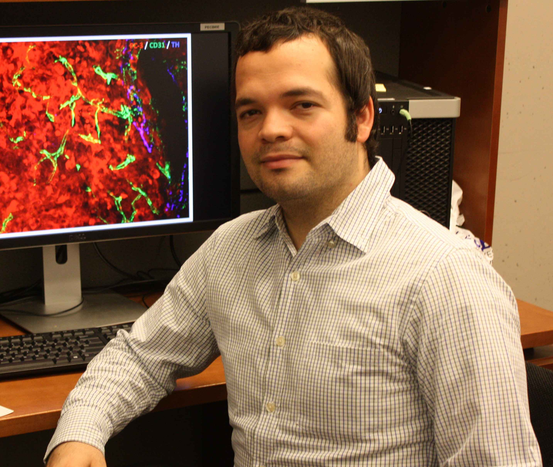 Alexander Birbrair pesquisa microambiente tecidual