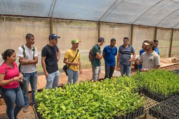 Mudas de plantas e técnicas de propagação são desenvolvidas pelo Grupo de Estudos e pelo Viveiro do ICA