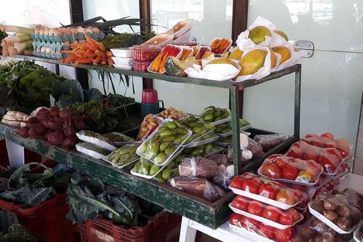 Feira Agroecológica da UFMG reúne produtos de agricultores familiares da RMBH