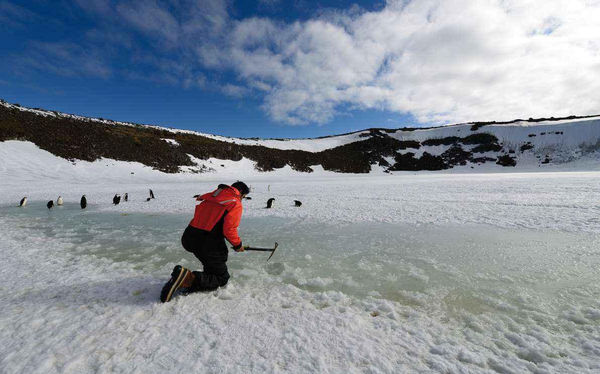 O filme mostra o cotidiano dos cientistas que realizam pesquisas nas terras geladas