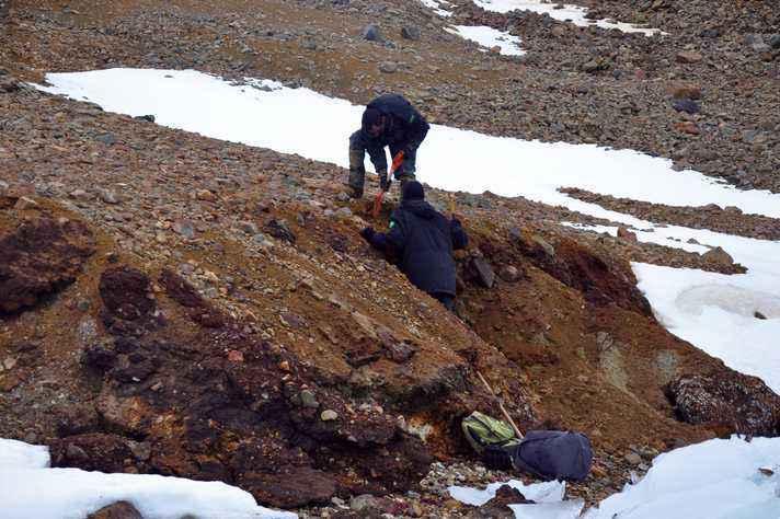 Análise dos solos foi feita com base em amostras coletadas em expedições à Antártica