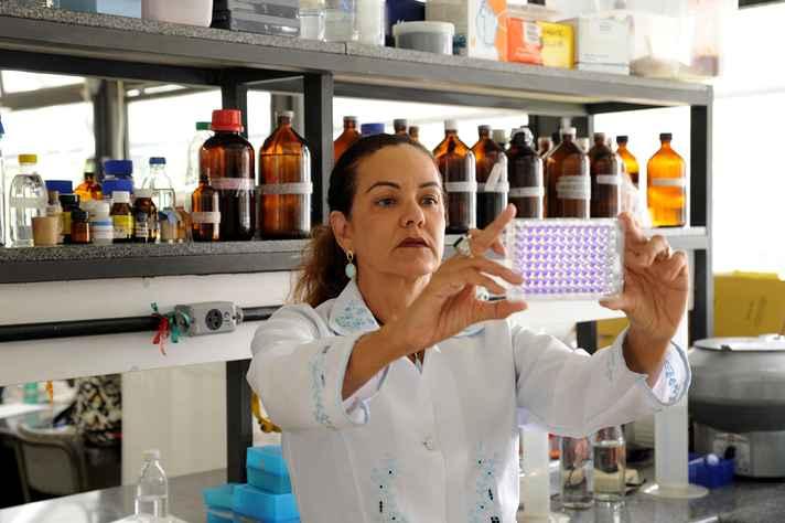 Zélia Lobato, professora da Escola de Veterinária