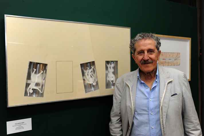 Luiz Alberto Nemer: valorização da arte como dimensão científica
