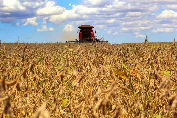 Formulário pode ser preenchido por produtores rurais, cooperativas, sindicatos, entidades de classe e representantes de agroindústrias