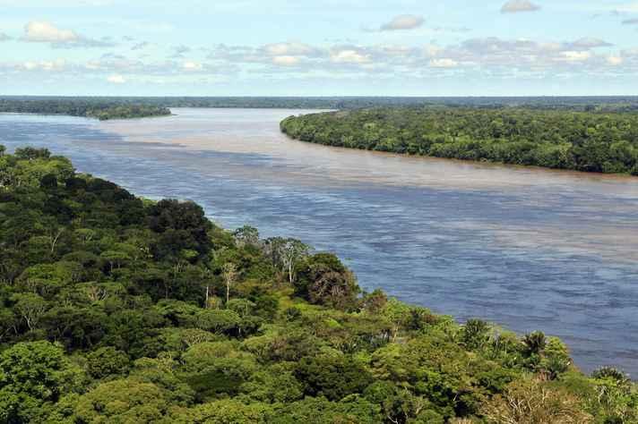 Área da Amazônia brasileira próxima a Manaus