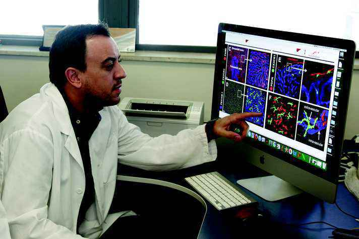 Gustavo Menezes em seu laboratório no ICB