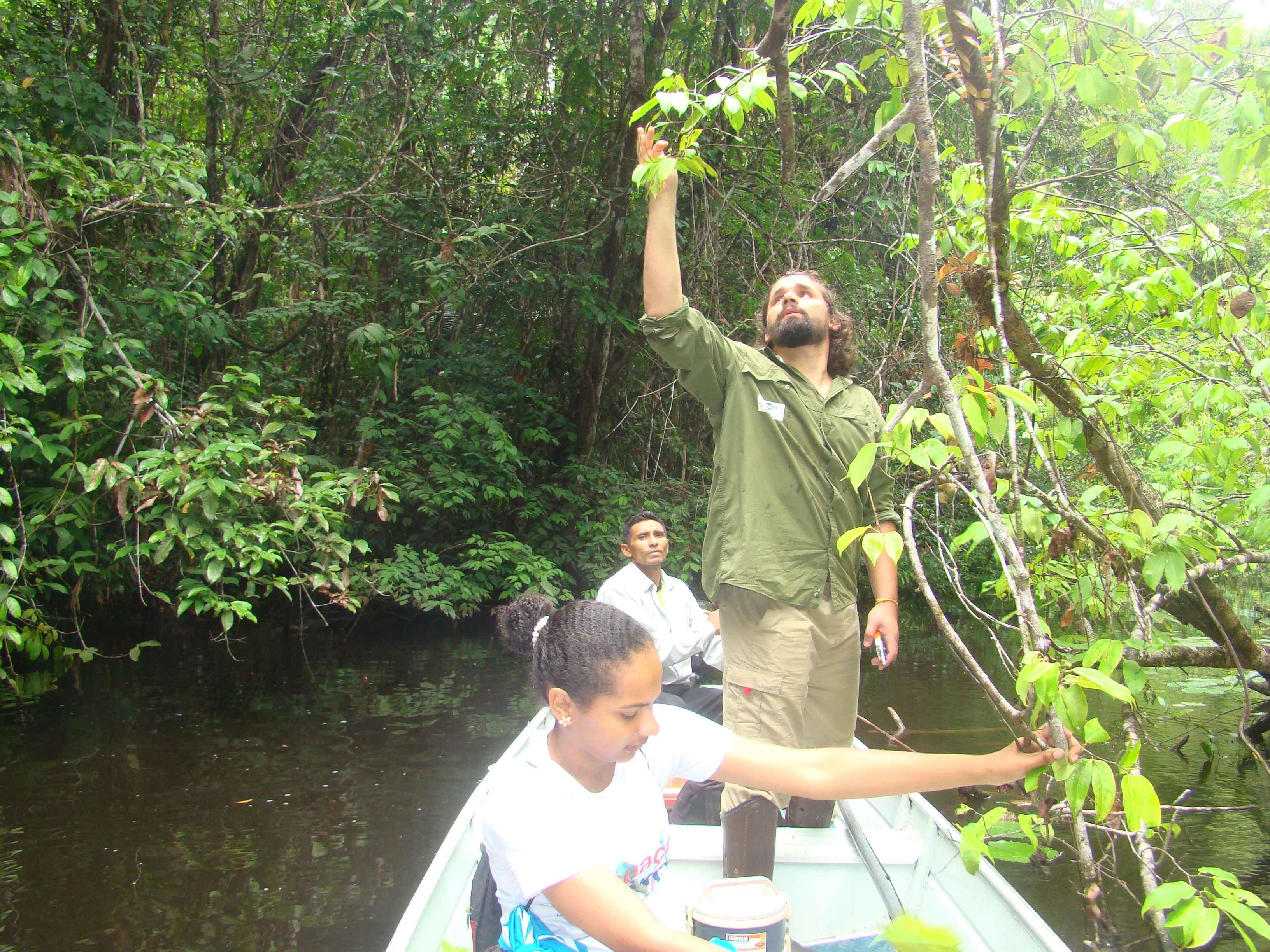Danilo Neves coleta na Floresta Nacional de Caxiuanã, no Pará