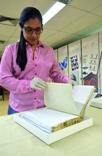 Bibliotecária Diná Araújo
