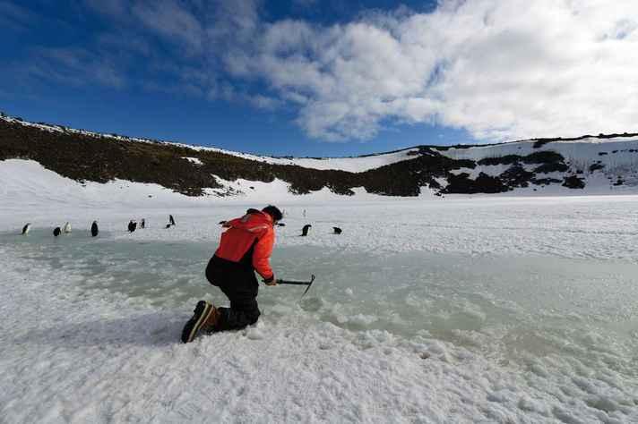 Pesquisador da UFMG em trabalho de escavação em solo antártico