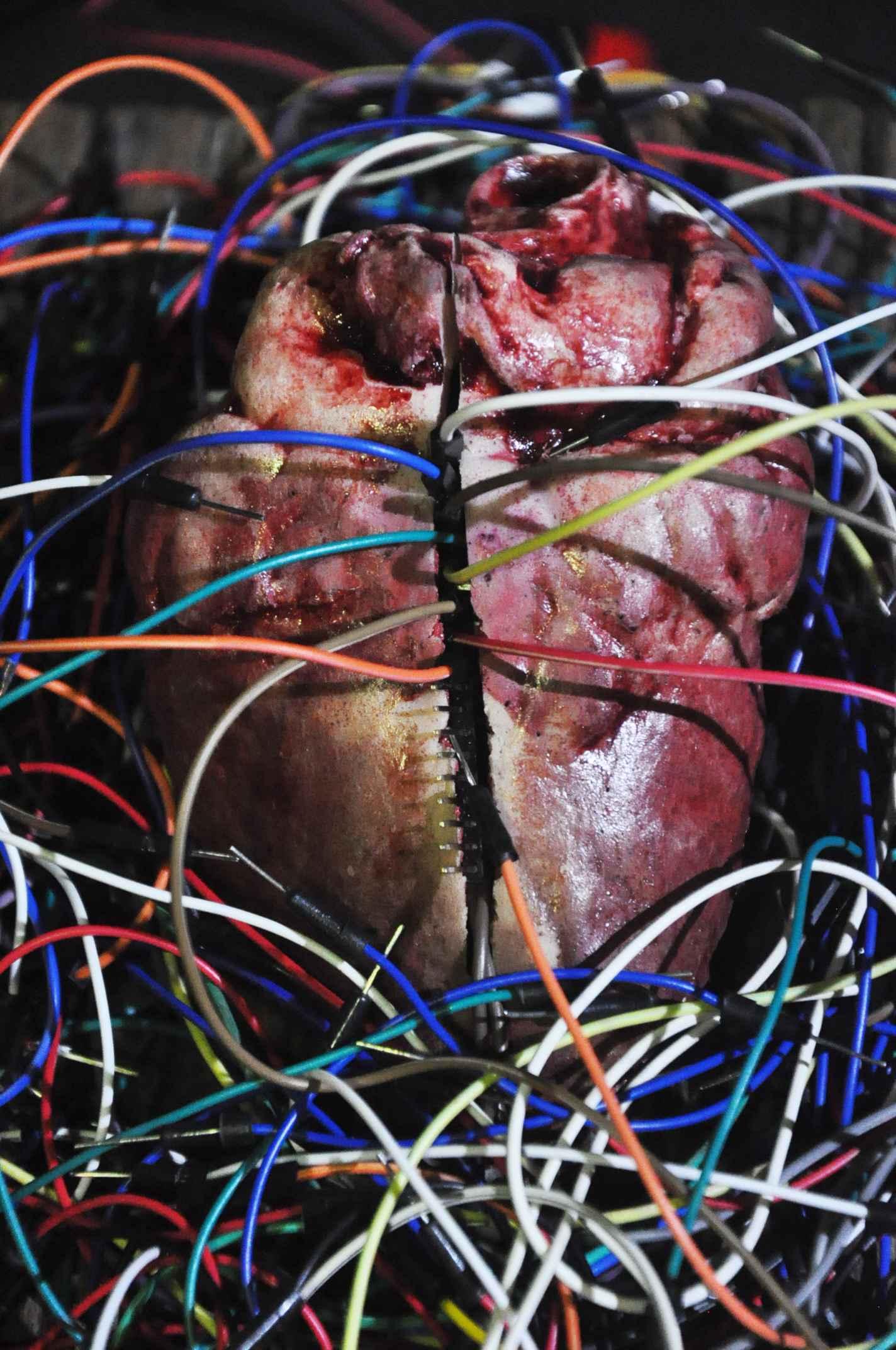 Obra 'Anatomia de um hacking': provocação estética