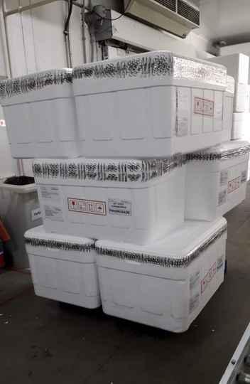 Kits para produção de testes já foram enviados para SES-MG