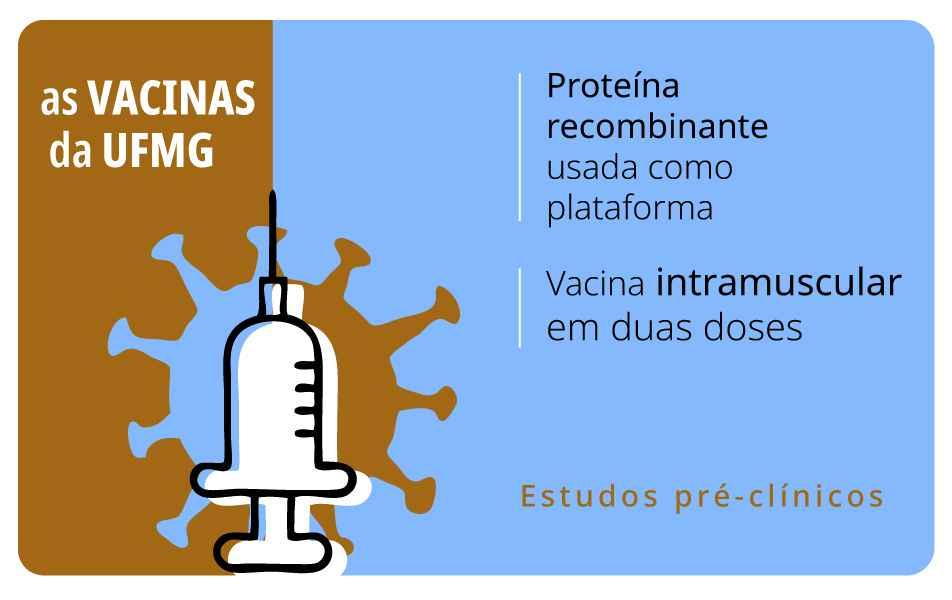Imunizante que se vale de proteína recombinante também é desenvolvido no CT-Vacinas