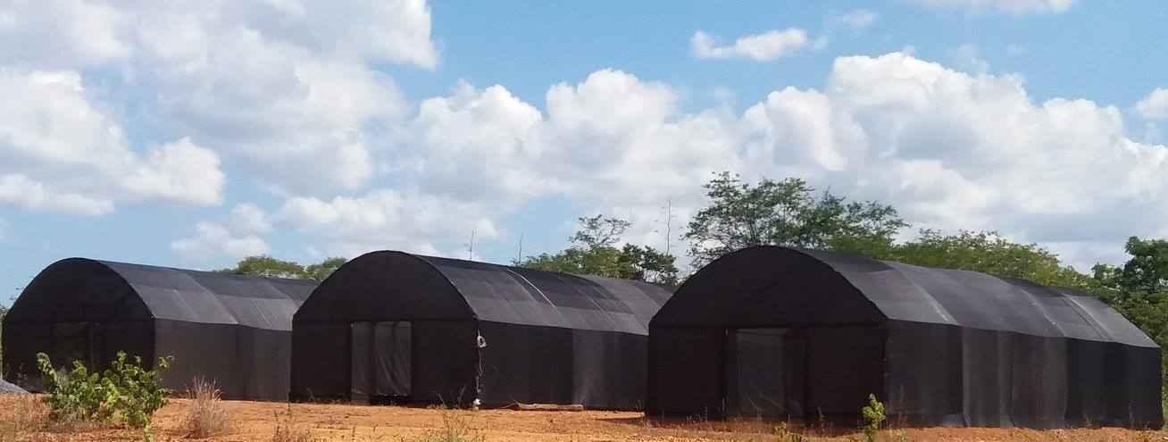 Biofábrica contará com estufas, viveiros e laboratórios, entre outras instalações