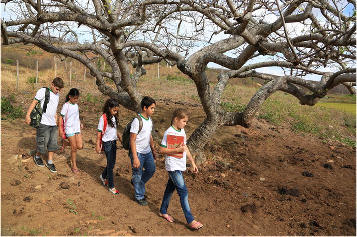 Busca ativa: municípios precisam encontrar jovens que estão sem escola